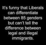 85 genders